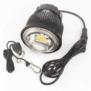 2pcs 50W 100W DIY COB LED CXB3590 3500k LED Grow Light Full Spectrum Kit de luces de cultivo de plantas con Meanwell LED Driver
