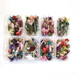 1 Andere Festliche Party Supplies Festliche Party Supplies Reihe von Mini Blumen Hochzeit Hauptdekoration Geschenkverpackung getrocknet voller Sterne