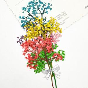 60pcs Pressed Dried Dyed Elderflower Flower With Stalk Plant Herbarium Jewelry Postcard Invitation Card Phone Case Bookmark DIY