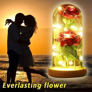 Red Silk Rose and Led Light with Fallen Petals in a Glass Dome on a Plastic Base Valentine's and Mother's Day Gifts