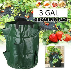 Hanging Strawberry Garden Planter Bed for Strawberry Flower Vegetable Bare Root Plants Felt Material Planting Grow Bag