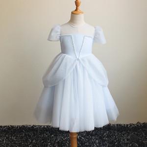Sommer Kleine Blumenmädchen hellblaue rosa Kleider Leistung Peng Peng Rock Geburtstag Prinzessin Kleid Mädchen Spitzekleid