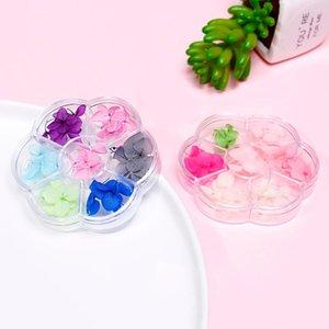 6colors / Boîte 3D Fleur naturelle Petite Dried Feuille naturel Autocollant floral Bijoux mixte Nail Art Décoration Fleurs Pressée sec # ZF1