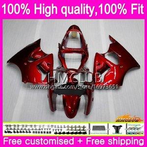 Injection 100% Fit Pour KAWASAKI ZX 600 CC 6 R ZX636 ZX6R 00 01 02 58HM.15 rouge brillant ZX 636 ZX6R ZX636 ZX 6R 2000 2001 2002 OEM carénages