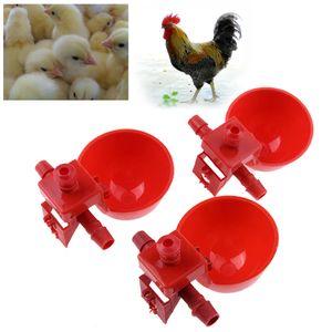 10 adet Otomatik Kuş Coop Besleme Tavukçuluk Su Içme Bardaklar Tavukçuluk Su Bardaklar Tavuk Kümes Hayvanı İçici Chook İçme Kase kırmızı fincan