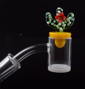 DHL New 4mm Opaque Bottom Quartz Banger Nail With Colored Glass Cactus Duck Carb Cap 25mm Honey Bucket for Glass Bongs dab rigs