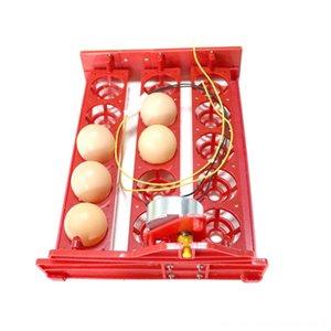 15 automatisch Incubator Drehen Eier Fach 220V110V12V Motor Huhn Vögel Eier ausbrütet Andere Pet Supplies Supplies Ausrüstung Geflügel I