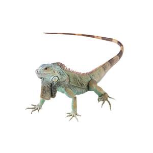 3D Car Stickers lizard Animals For Window Wall Bummper Laptop Windshield Waterproof Car Styling Motorcycle Sticker Decal