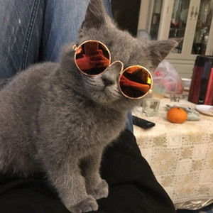Lovely Pet Cat Glasses Dog Glasses Prodotti per animali domestici per cani di piccola taglia Cat Eye-wear Dog Sunglasses Photos Pet Supplies