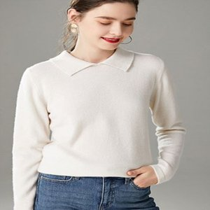 Autumn Jacket Female New Foreign Style Pure Cotton Bottoming Shirt Cotton Slim Lapel Long Sleeve T-shirt Female Students