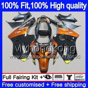 Inyección OEM para Kawasaki ZX 12R ZX1200 1200 cc 2002 2003 2004 2005 2006 Luz naranja 224MY.66 ZX 12 R ZX12R ZX12R 02 03 04 05 06 carenado