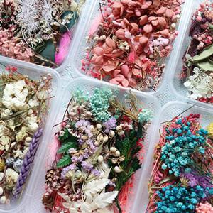 1 Box Real сухих цветов сухих растений для Ароматерапия свечи эпоксидной смолы кулон ювелирные мыловарения Craft DIY принадлежности
