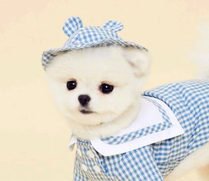 Summer Thin Pet Dog Clothes than Bear VIP Bomei Chenery Teddy Small Dog Clothes Wear Hat