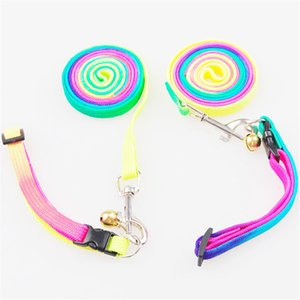 Dog Cat Collar Leash Adjustable Pet Collar Lead for Cat Puppy Small Pet Outdoor Walking Rainbow Leashes YQ01754