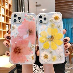 fiore Immortale grande margherita vero fiore secco adatto per iPhone Pro 11 max / XR / 7 / 8plus cassa del telefono mobile trasparente protettiva