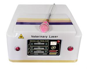 통증 완화, 상처 치유, 판매를위한 스포츠 상해 2020 LASTEK 의료 콜드 수의학 레이저 치료 장비