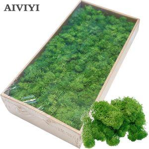 Artificial plant eternal life moss   home decoration wall DIY Flower material Mini Garden Micro Landscape Accessories T200624