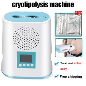 Mini Portable Cryo Fat Gel machine Lipo amincissant la machine Accueil Utilisez Mini Cryo Pad Salon utilisation Lipo amincissant la machine