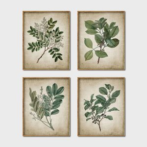 Green Plant Wall Art Prints Retro Poster Vintage Foglie Tela Pittura Stampa Botanical Wall Picture Home Decoration Art Decor