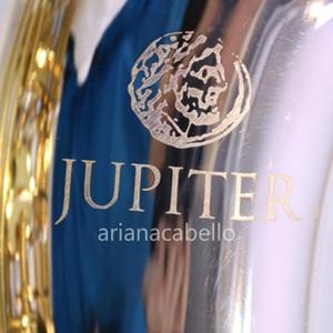 JTS1100SG BB Tune Tenor Saxophone Strumento musicale B Brass Plat Placcato Argento Placcato Corpo Laccato Gold Sax con cassa Accessori per bocchino