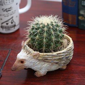Flower Pot bonito Hedgehog resina para Succulent Cactus Plantas Mini animal Planter bonsai jardim de decoração artesanato enfeites T200529