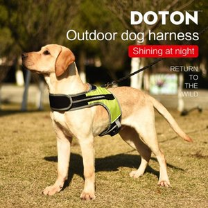 Dog Leashes with LED Medium and Large Dog Leashes with Fixed Fastener Dog Supplies 3M Reflective Light Strip