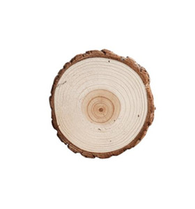Small wooden pile base decoration stump original wood fir tree photography photo DIY decorative props display