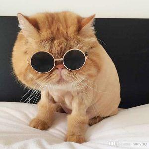 Perro gafas de mascotas gafas de mascotas gafas de sol Pequeño perro Ojo de ojos Fotos Props Dog Cat Accesorios Suministros para mascotas para productos para mascotas Gafas de gato