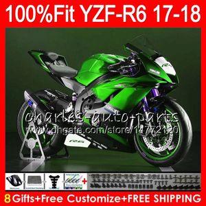 Injektionskörper für Yamaha Green Black Light YZF600 YZF R6 2017 2018 Karossergebnis 122HM.AA YZF 600 YZF R 6 YZF-R6 YZF-600 YZFR6 17 18 Verkleidungsset
