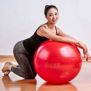 Spor Yoga Toplar Bola Pilates Fitness Salonu Fitball Egzersiz Pilates Egzersiz Masaj Topu 55cm 65cm