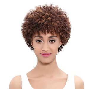 Afro Kinky Curly Lace Front Wigs for Black Women 27# 6 inch Short Malaysian Human Hair Swiss Lace Glueless Wig