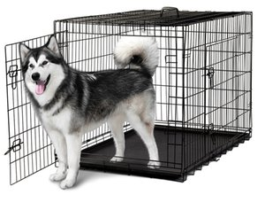 48'' 2 Doors Wire Folding Pet Crate Dog Cat Cage Suitcase Kennel Playpen With Tray Pet cage foldable dog cage