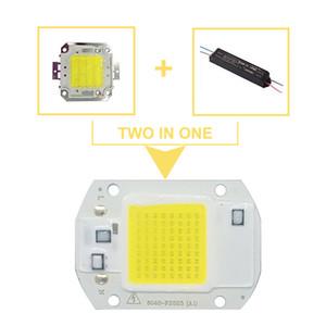 5pcs / lot LED COB COB Chip 20W 30W 50W 220V Perles d'entrée de lumière Smart IC Driver pour DIY PRODUCLIGHT PRODUCLIGHT STREKLIGHT Lampe minière