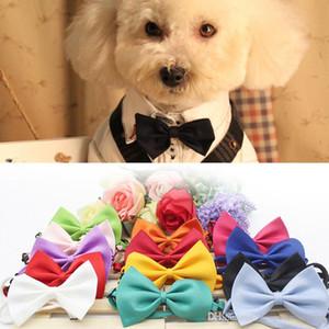 Cat Dog Neck Dog Tie Dress Up Bow Tie animal de estimação adorável tirar foto Supplies Pet Grooming Laço da flor da mantilha ajustáveis Ties BH1715 ZX
