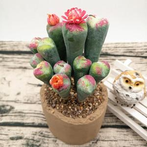 12pcs Lithops Succulente finte Piante fai da te accessori Artificial Plant nuziale della casa natale Tabella decorazione del mestiere di visualizzazione