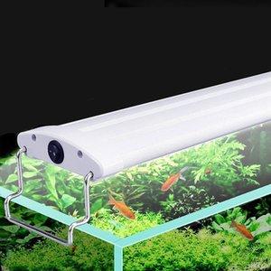 21-45cm 220-240V Aquarium Led aquarium Lampe avec Extendable Supports blanc et bleu pour Aquarium Fit Leds
