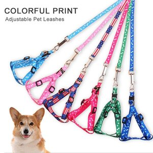 Pet Dog Cat Harness Leash Adjustable Harness Vest Leash Collar Puppy Small Dog Outdoor Walking Chihuahua Terier Schnauzer