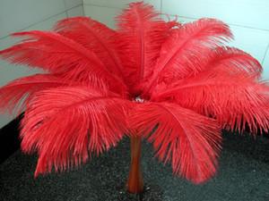 En gros beaucoup de belles plumes d'autruche 25-30cm pour pièce maîtresse de mariage table centres Party Decoraction approvisionnement EEA194