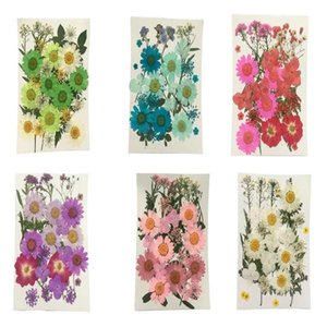 29-33pcs Natural Pressed Decorative Dried Flower Material Artificial Dried Flowers DIY Jewelry Making Phone Case Accessories
