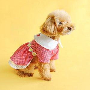 애완 동물 테디 슈나우저 개 작은 개 봄과 여름 귀여운 꽃 무당 벌레 복장 포메 라니아 치와와 비숑 강아지 의류