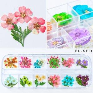 Mixte ongles naturels Pressé de fleurs séchées de bricolage 3D Fleur Fleur Feuille curseur autocollant manucure vernis à ongles Décoration Art Nouveau Arrivée