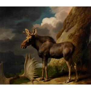 Джордж Стаббс картины ручной росписи холста искусство лошадь Музы изображения для декора гостиной