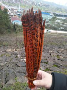 Orange Fasanenschwanzfedern, Hauptdekorationhochzeitsfokus 50 Stücke 28-235 cm
