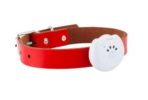 Mini GPS Tracker Köpek Tasması Takip Locator RYDG9