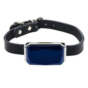 Evcil Activity Monitor Pet GPS Tracker 3G Köpek Tracker ve evcil hayvan Bulucu GPS Köpek Yaka Bulucu Su geçirmez Takip Cihazı