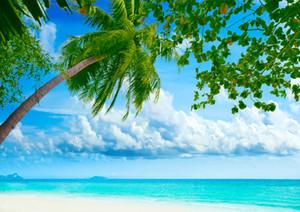 Vinilo tópico playa telón de fondo Seaside Palm Tree Shoot Fondo para vacaciones de verano Backdrops fotógrafo niños retrato Shoot Studio