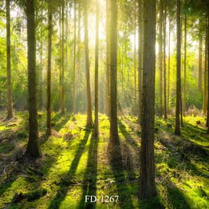 어린이 키즈 베이비 샤워 배경으로 PHOTOCALL에 대한 햇빛 숲 비닐 photography 배경
