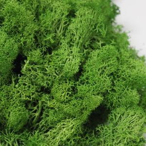 20g / set Yapay Bitki Sonsuz Yaşam Moss / Bahçe Ev Dekorasyon Duvar DIY Çiçek Malzeme Mini Bahçe Mikro Peyzaj Aksesuarları