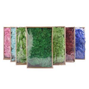 20g Qualitäts Artificial Moss Immortal Moss Simulation Green Plant Grass Haus dekorative Wand DIY Mikro Landschaft Zubehör