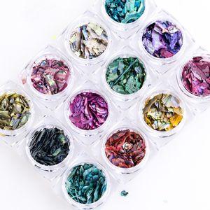 12 color de uñas de arte decoración irregular de papel Shell de la escama de la rebanada de las lentejuelas Fragmento 12 Caja hermosa pieza de importación de Shell del olmo 3D